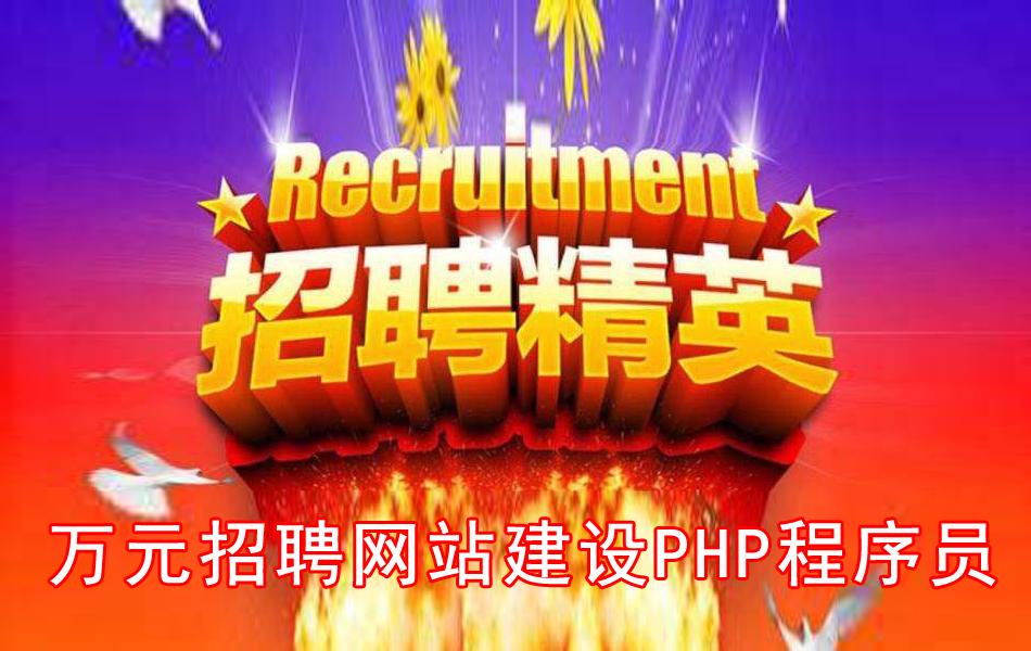 公司万元招聘网站建设php程序员